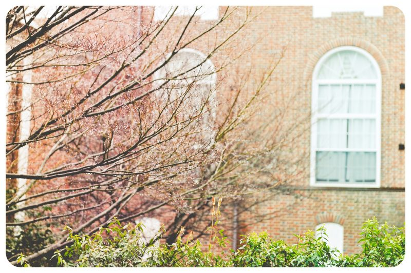 Salisbury University on a Rainy Day :: Maryland Photography