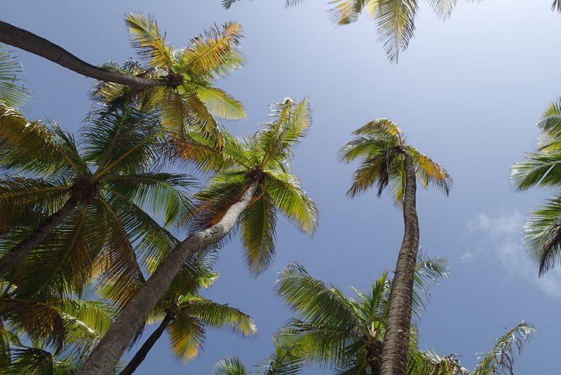 Vacation Paradise :: Puerto Rico Trip! Travel Photography