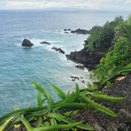 Maui Hawaii | The travel photos